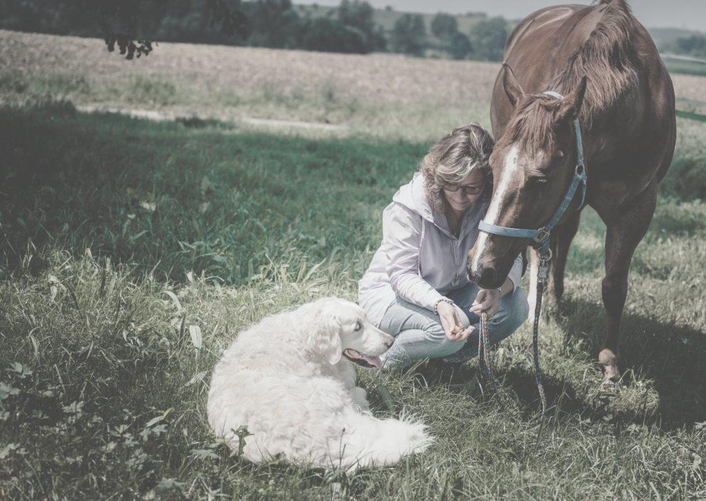 Karin Wöste bei der Tierkommunikation